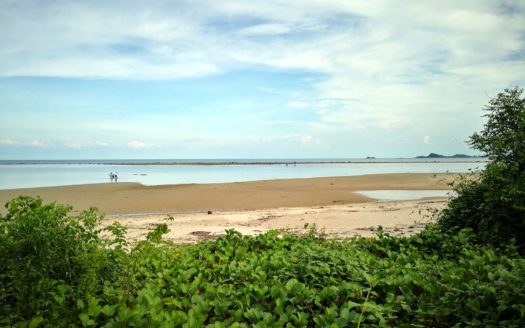 ID 25933 Beach Front Land 2400 sqm Koh Samui