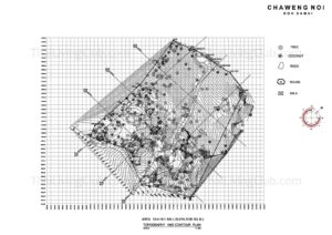 Topography and Contour Plan