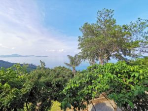 ID 26010 Sea View Land Chaweng Noi Koh Samui 20876 sqm