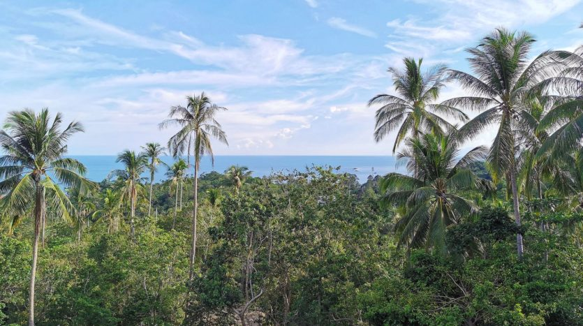 ID 26147 Lamai Sea View land 3200 sqm Ko Samui